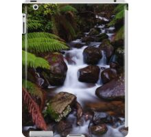 Cement Creek Cascades - Victoria Australia iPad Case/Skin