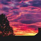 Burning Sky and Tree Silhouette by Milan Surbatovic