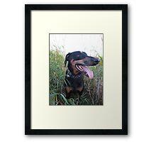 Plains Profile Framed Print