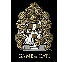GAME OF CATS Photographic Print