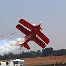 Red Plane by Laura Puglia