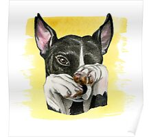 Black and White Dog Watercolor Painting Poster