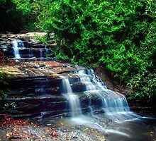 Buderim Falls... by Tracie Louise