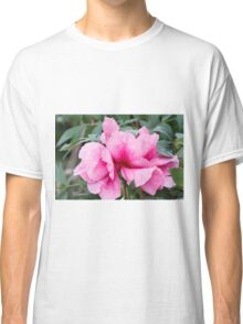 peony in spring Classic T-Shirt