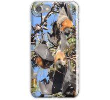 Flying Fox iPhone Case/Skin