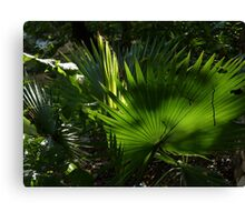 green III - verde Canvas Print
