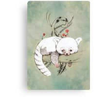 Red Panda! Canvas Print