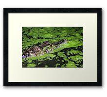Hidden in Green Framed Print