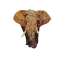 PolygonElephant (White) Photographic Print