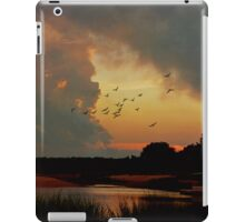 Breathe ( in the Air) iPad Case/Skin