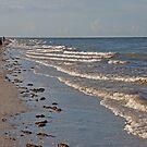 Walking the Surf  by John  Kapusta