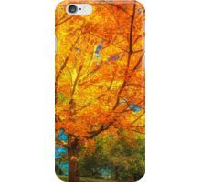 Shaded by Autumn fire iPhone Case/Skin