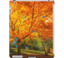 Shaded by Autumn fire iPad Case/Skin