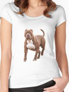 Pit bull brown 2 Women's Fitted Scoop T-Shirt