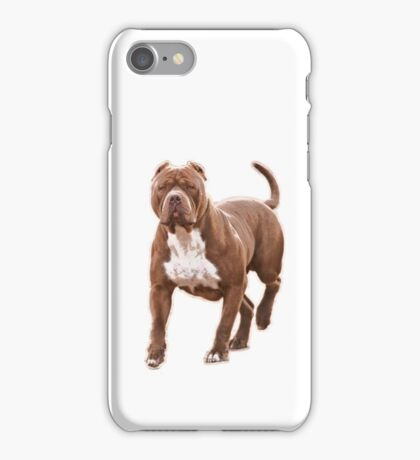 Pit bull brown 2 iPhone Case/Skin