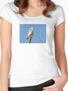 Black-shouldered Kite  Women's Fitted Scoop T-Shirt