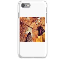 First Snowfall Of The Year iPhone Case/Skin