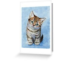 Sweet Tabby Kitten 268 Greeting Card