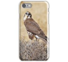 Brown Falcon ~ Patience iPhone Case/Skin