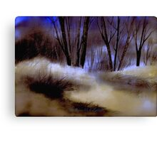 Quietude... Canvas Print