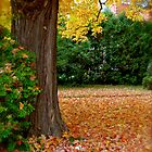 A Carpet of Leaves by goddarb