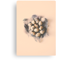 quail eggs nest Canvas Print
