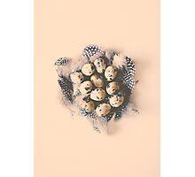quail eggs nest Photographic Print