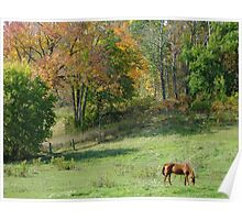 Fall Meadow Poster