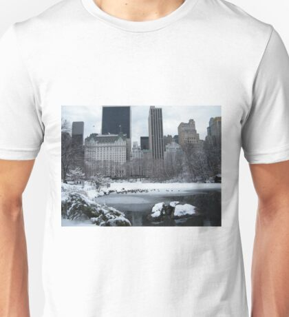 Central Park In Snow T-Shirt
