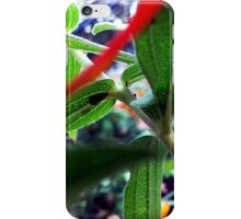 Plant Stalk iPhone Case/Skin