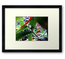 Plant Stalk Framed Print