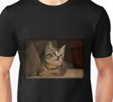 Dreams Of Beyond The Door Unisex T-Shirt
