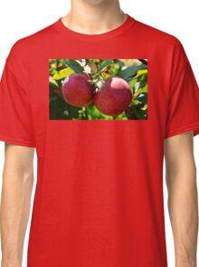 Apples, Apples, Apples Classic T-Shirt