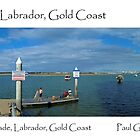 Broadwater, Labrador, GoldCoast by Paul Gilbert