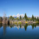 Schwabacher's Landing on the Snake River in the Grand Tetons National Park by Martin Lawrence