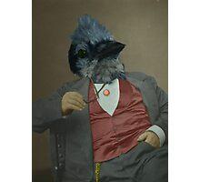 Gentlemen's club of exquisite plumage. Photographic Print