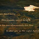 The Flow Of Life by Geno Rugh