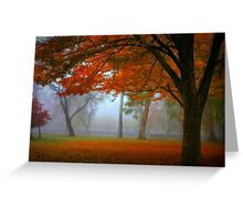 Autumn's Blanket Greeting Card