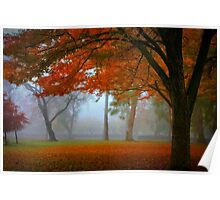 Autumn's Blanket Poster