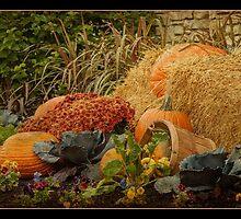 Autumn Brilliance by Victoria Jostes