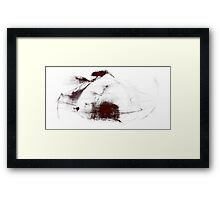Slowing Down Framed Print