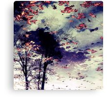 Water and Fall Canvas Print