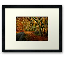 I Have Changed ~ Fall Colors ~ Framed Print