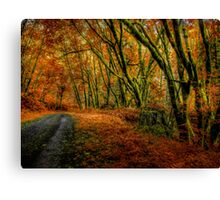 I Have Changed ~ Fall Colors ~ Canvas Print