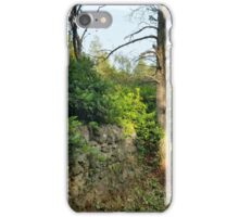 Cragside Labyrinth Wall iPhone Case/Skin