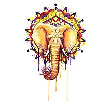 Elephant Mandala Photographic Print