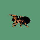 Tarantula (Halloween) by Olluga