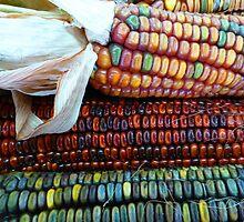 More Indian Corn by WildestArt