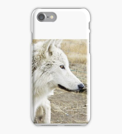 Face of the Arctic iPhone Case/Skin