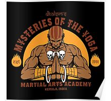 dhalsim martial academy Poster